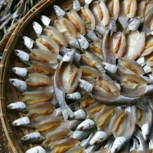 Soolatud kala